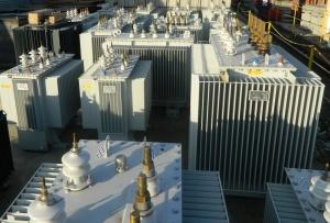 ТМГ 100-10/0,4 (Силовые масляные трансформаторы в герметичном корпусе) Фото